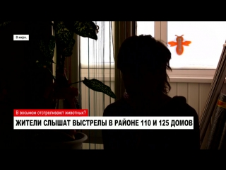 Ноябрьск24 о