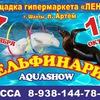 Дельфинарий г.Шахты 2017