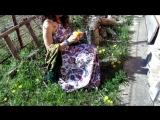Посиделки в саду