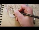 горшунова_надежда graphic draw drawing drawings wild catportrait animals animal рисунок рисую рисуюкаждыйдень цветны
