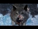 Kuplinov Play – Dark Souls 3 Ashes of Ariandel – Волчара! 4