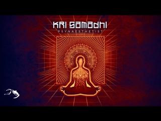 Kri Samadhi