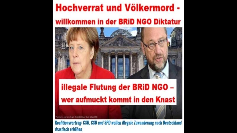 Koalitionsvertrag: CSU, CSU und SPD wollen illegale Zuwanderung nach Deutschland drastisch erhöhen