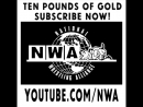 Who will be the @NWA Worlds Champion at ALLIN - - Latest TenPoundsOfGold explores the options of @RealNickAldis or @DareWolf333.