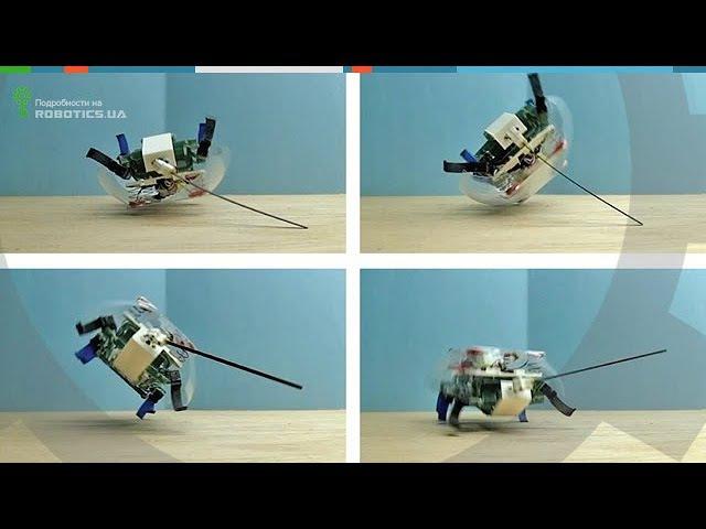Робот таракан VelociRoACH (Robotics.ua)
