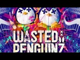 Wasted penguinz 2014 - Masters of Melodies Mix HD 30 best tracks