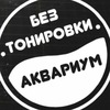 Тонировка Детейлинг Евпатория  Toner 82