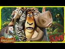 Стрим Madagascar : — ЧАСТЬ 1 I Like To Move It, Move It ♡( ◡‿◡ )