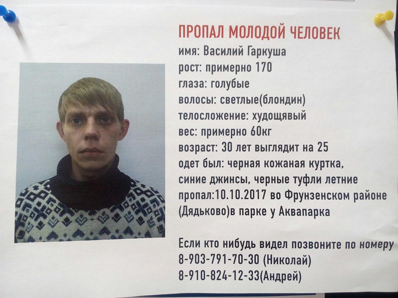 В Ярославле уже больше недели ищут молодого человека, который пропал в парке Судостроителей