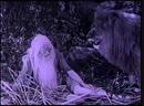 Tarzan and the Golden Lion / Тарзан и золотой лев (1927)