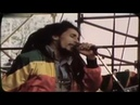 Bob Marley and Billy Idol - With a Rebel Yell, She Cried, 'Don't Give Up the Fight'