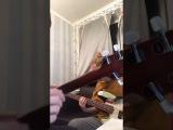 10.12.2017 Эфир Жени Мильковского  Группа Нервы
