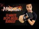 10 Min. KILLER Biceps Dumbbells Resistance Bands Workout Finisher | 10 Minute Burnouts 59