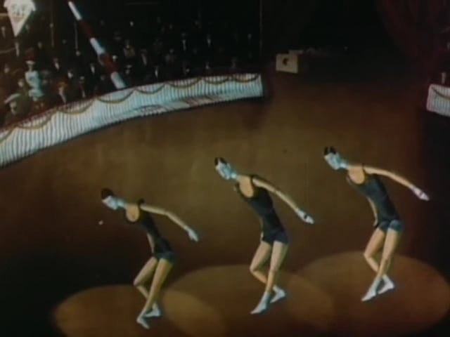 Vesely Circus (1951)