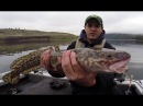 Fishing for Burbot in Washington