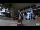 Didga the Drumandbass Cat