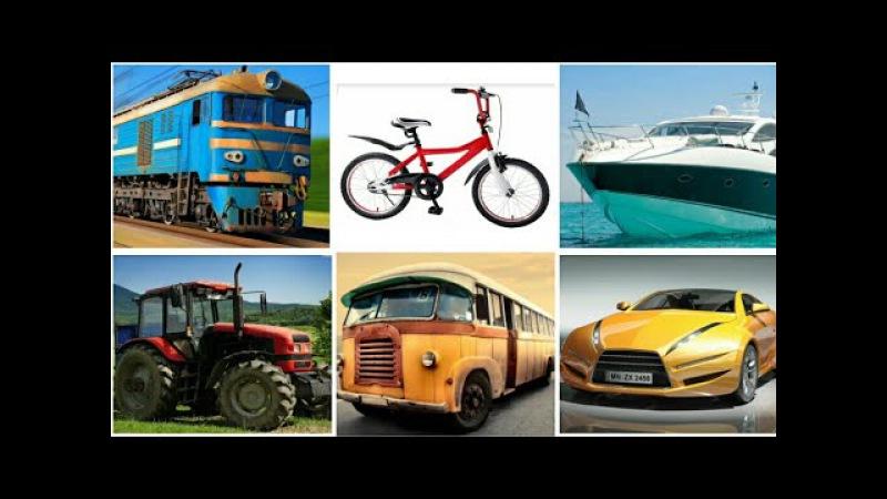 Транспорт для детей. Название и звуки машин, поездов, самолетов, спецтехники. Изу...