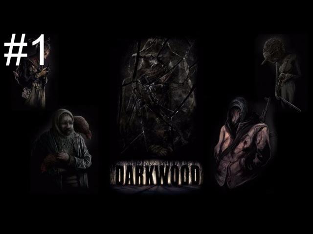 Запись-Серёга Кудрявый играет в Darkwood- Минус Оборотень.