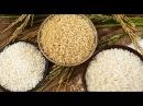 Фальшивый рис из Китая как определить
