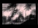 Rhythm Sound - Mango Drive
