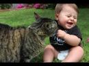 Смешные Приколы с Кошками! Коты и Дети!