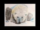 SONG OF THE POLAR BEAR