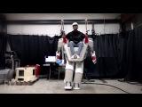 The Giant Human Riding Robot