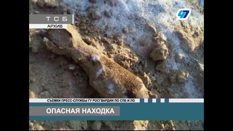 ТК 47 канал - Взрывотехники ГУ Росгвардии обезвредили множество обнаруженных боеприпасов на территории СПб и ЛО