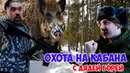 Охота на кабана-мутанта Выживание в лесу с дядей Борей 3 Прикол на охоте