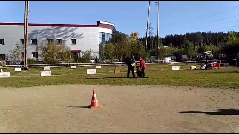 Ettero di Fosco Aidas (Екатеринбург, 16.09.17)