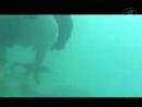 Документальный фильм Спецназ - Боевые пловцы