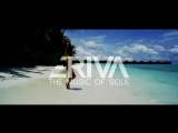 Dave Jones & Aeris ft. Pool Cosby - Thrive
