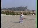 80-летний китайский мастер. Меч Цзянь. Тайцзицюань Чень ши. 陈氏太极剑