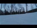 Лайма в лесу