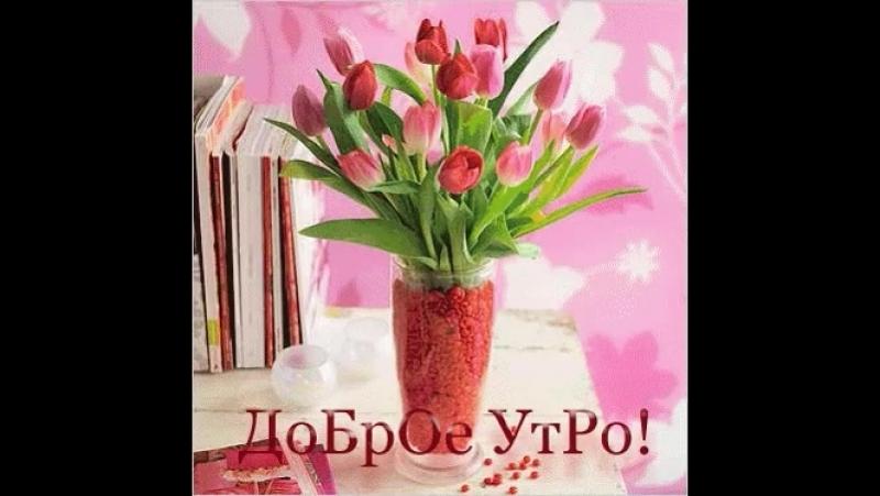 Doc360448331_466634315.mp4