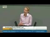 Выступление депутата Бундестага Алисы Вайдель