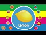 Vocabulary Collection _ Video Flash Cards _ Kindergarten, Preschool, ESL for Kids _ Fun Kids English