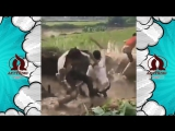 Funny Facebook China Fails 2017 - Beyond The Vine Compilation - Best of Chinese Funny Prank Video