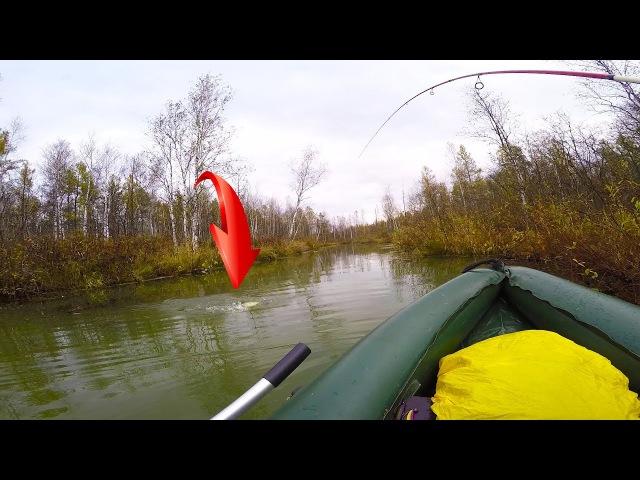 Рыбалка осенью | Щуки звереют на неогруженную резину!! ОСЕННЯЯ РЫБАЛКА НА ЩУКУ