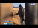 ПОДДЕРЖКА ИЛИ ПОДНОЖКА Зерновой потоп в Сибири