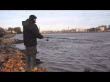 Нева осенью 2014 Neva river in autumn.Day after day