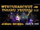 Мексиканские Пчелки Убийцы Кожаное пирожное Live Владивосток 09 12 2017