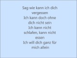 Matthias Reim-Ich will.wmv