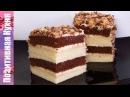 БЫСТРЫЙ ТОРТ НА СГУЩЕНКЕ СО СМЕТАННЫМ КРЕМОМ ВКУСНО И ПРОСТО CONDENSED MILK CAKE