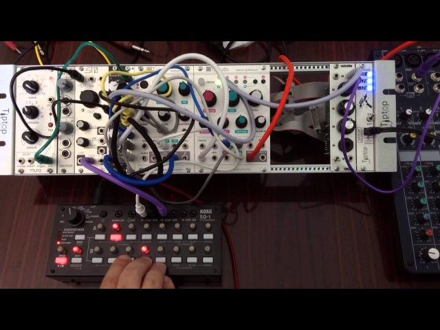 Clouds, Sheep, STO, SQ1 - Modular Jam
