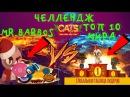 кетс ➤➤ЧЕЛЛЕНДЖ!! ➤ПРОБУЕМ НА ЗУБОК ТОП 10 ИГРОКОВ МИРА➤➤кэтс,cats crash arena turbo stars Mr