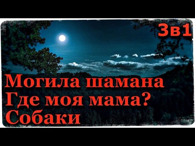 Истории на ночь (3в1) 1.М0гила шамана, 2.Где моя мама 3.Собаки