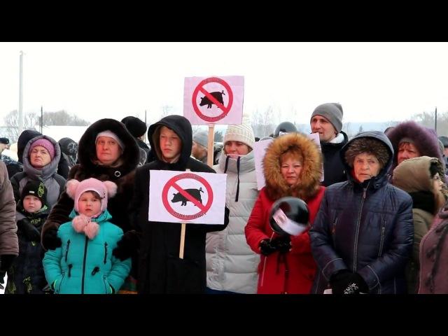 Серебряные Пруды Митинг против мегасвинарника и полигона ТБО 17 февраля 2018 г