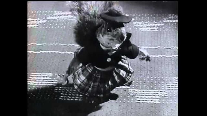 Squirrel Dance – from The Great Rupert / Isten küldte, mókus hozta (1950)
