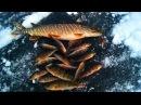 ОФИГЕТЬ зимняя рыбалка нЕ ожидал такого результата за такую короткую рыбалку